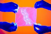 view Origami Membrane for 3D Organ Engineering digital asset number 1