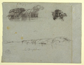 view Sketches of Trees, Vines and a Bank of the Rio Magdalena, Columbia digital asset number 1
