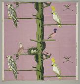 view Bird Zoo digital asset number 1