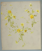 view Daisies and daffodils digital asset number 1