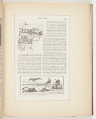 view The Dove-Cote, A Sea-Side Turn-Out, Illustrations for Scribner's Monthly (XVIII, No. 5, September 1879, p. 649) digital asset number 1