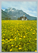 view Munich Olympics Blatt 7: St. Koloman, Germany digital asset number 1