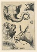 """view Heads of an elephant, boar, lion, donkey and a butterfly, plate from the """"Scuola Perfetta per Imparare a Disegnare tutto il corpo Humano Cavata dallo studio e disegni de Caracci"""" digital asset number 1"""