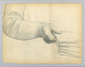 view Study of Right Arm digital asset number 1