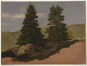 view Two Pine Trees digital asset number 1