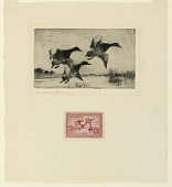 view Duck Stamp Design digital asset number 1