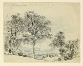 view Sketches, Maples digital asset number 1