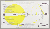 """view announcement: """"Lines Presents the Reading of Gener, March 1989"""" (for conference at Detroit Institute of Arts & Part of Lines Series) digital asset number 1"""