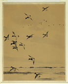view Ducks in Flight digital asset number 1