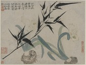 view Album of Flowers and Portrait of Shitao: Bamboo and Narcissus digital asset number 1