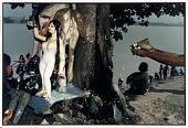 view Worship of Sitala Mata, Smallpox Goddess, Calcutta, 1988 digital asset number 1