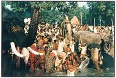 view Men and Elephant Bathe, Sonepur, 1988 digital asset number 1