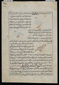 view Folio from <em>Aja'ib al-Makhluqat</em> (Wonders of Creation) by al-Qazvini; recto: Mountain Swallow (<em>Watwat</em>), Gerboa (<em>Yara'a</em>), Wild Pigeon (<em>Yamamah</em>); verso: text digital asset number 1