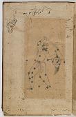 view Suwaru-l-kawakib (Description of the Fixed Stars) by 'Abd al-Rahman al-Sufi (incomplete) digital asset number 1