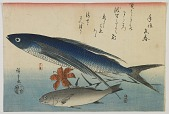 view Flying fish (<i>tobiuo</i>) and white croaker (<i>ishimochi</i>), from the second series of fish prints digital asset number 1