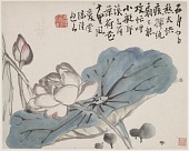view Lotus in the Style of Lu Zhi digital asset number 1