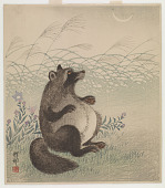 view Japanese Racoon Gazing At The Moon digital asset number 1