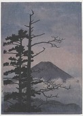 view Mount Fuji from Mitsutoge pass digital asset number 1