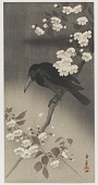 view Crow And Cherry Blossoms (Copy of Koson) digital asset number 1