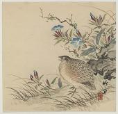 view Bird In Grass digital asset number 1