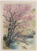 view Takaragawa Hot Spring in Spring digital asset number 1