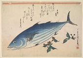 view Skipjack Tuna (<i>Katsuo</i>) with blooms of Strawberry geranium, with inscription digital asset number 1