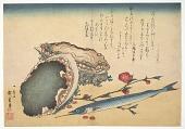 view Awabi and Sayori (Abalone Haliotic tuberculata), from the <i>Great Fish Series</i> digital asset number 1