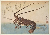 view Woodblock print from the <i>Large Fish Series</i>: Ise-ebi: Crawfish or Spiny Lobster and Ebi: shrimp digital asset number 1