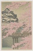 view Cherry blossoms at Himeji castle digital asset number 1