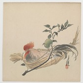 view Cock Resting In Basket With Daidai Plant digital asset number 1