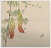 view Gourds and Dragonfly digital asset number 1