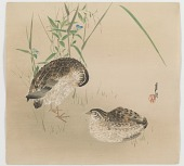 view Two Quail digital asset number 1