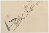 view Bird On Branch digital asset number 1