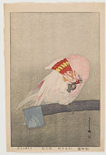view Major Mitchell's cockatoo, from the series At the Zoological Garden digital asset number 1
