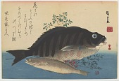 """view Two fish, from the """"Large Fish"""" series digital asset number 1"""
