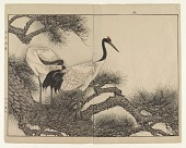 """view Cranes/ Page From """"Keinen Gafu"""" digital asset number 1"""