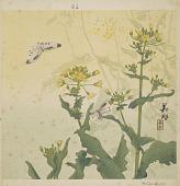 view Album of sample prints, Vol. IV of XII digital asset number 1