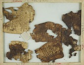 view Fragment No. 1: A small portion of The Psalter (Ps. XLIII, 24ff) on three pieces of vellum digital asset number 1