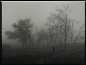 view The Northern No. 14 (Dense Fog) digital asset number 1
