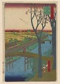 view <em>Koume Embankment (Koumetsutsumi)</em> from the series <em>One Hundred Famous Views of Edo (Meisho Edo Hyakkei)</em> digital asset number 1