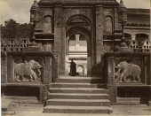 view Photographs of Sri Lanka collected by Charles Freer in 1907, undated digital asset number 1
