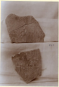 view Excavation of Samarra (Iraq): Fragments of Unglazed Ceramic Vessels, Found in Private House digital asset: Excavation of Samarra (Iraq): Fragments of Unglazed Ceramic Vessels, Found in Private House [graphic]