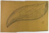 view D-1108: Excavation of Samarra (Iraq): Vegetal Ornamentation Made of Lead Glass, Found in Palace of the Caliph (Dar al-Khilafa, Jawsaq al-Khaqani, Bayt al-Khalifah) digital asset: Excavation of Samarra (Iraq): Vegetal Ornamentation Made of Lead Glass, Found in Palace of the Caliph (Dar al-Khilafa, Jawsaq al-Khaqani, Bayt al-Khalifah) [drawing]