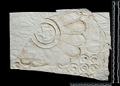 view Excavation of Pasargadae (Iran): Squeeze of Decorated Stone Door Fragment with Rosette, from Gate R (Gate House, Palace with the Relief) digital asset number 1