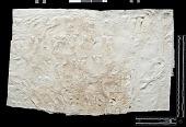 view SQ 9: Naqsh-i Rustam. Lines 21--25, middle digital asset: Naqsh-i Rustam (Iran): Squeeze of Inscription, DNb, Old Persian Version, on the Tomb of Darius I