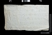 view Excavation of Persepolis (Iran): Squeeze of Inscription, DPa?, Elamite Version, on Wall of the Tachara digital asset number 1