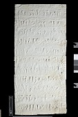 view SQ 115: Naqsh-i Rustam, Great lower inscription. 77--5. digital asset: Naqsh-i Rustam (Iran): Squeeze of Inscription, DNb, Old Persian Version, on the Tomb of Darius I