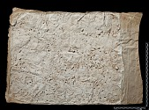 view The Sassanian Inscription of Paikuli (Iraq): Squeeze A'.1, Parthian Version digital asset number 1