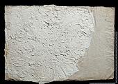 view SQ 18: Pahlavik, publ. Paikuli. p.153 digital asset: The Sassanian Inscription of Paikuli (Iraq): Squeeze C'.9, Parthian Version
