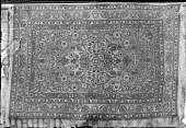 view Persian Carpet digital asset: Persian Carpet [graphic]